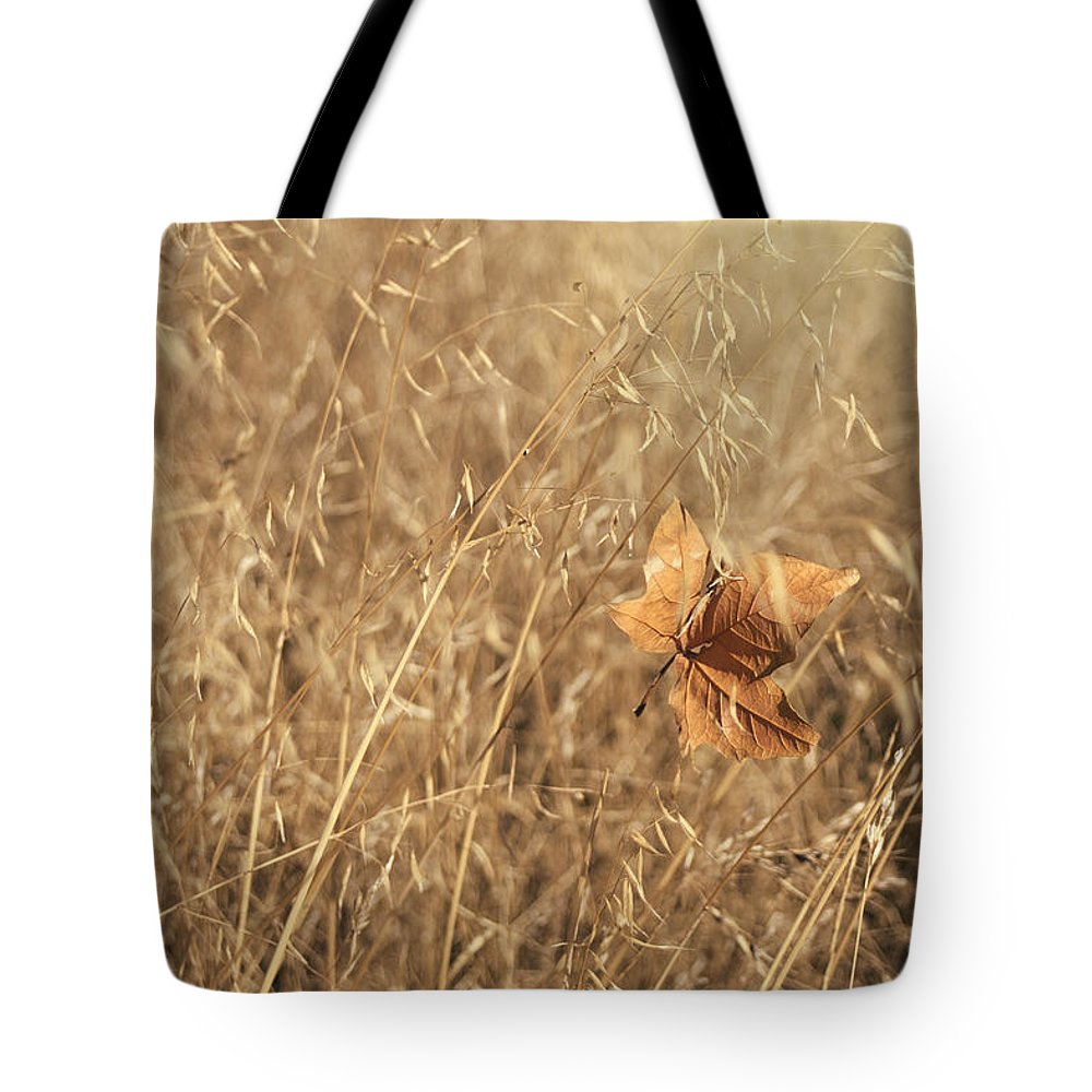 Leaf Tote Bag featuring the photograph Hold Me Tenderly by Laurie Search