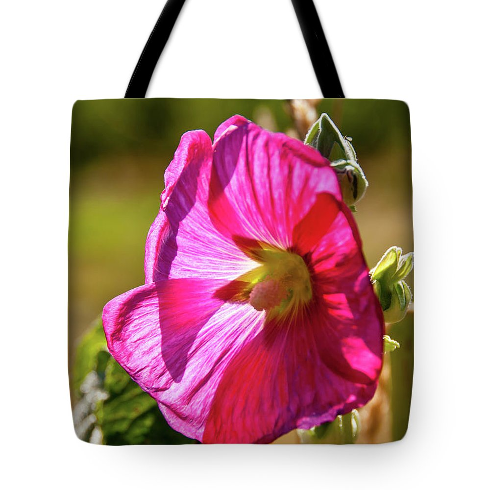 Flowers Tote Bag featuring the photograph Hollyhock 7189 by Guy Whiteley