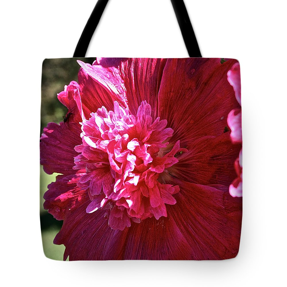Flower Tote Bag featuring the photograph Hollyhock Highlights by Susan Herber