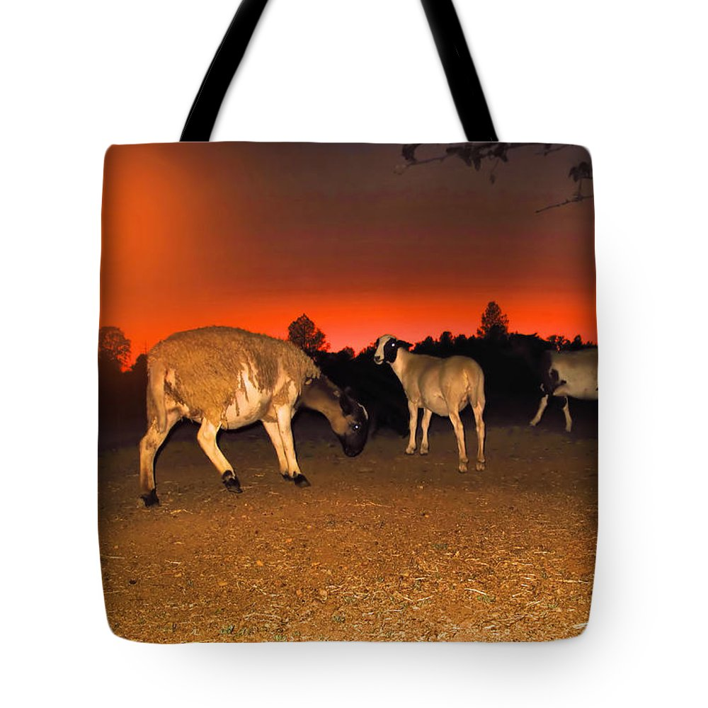 Sheep Tote Bag featuring the photograph Homeward Bound by Joyce Dickens