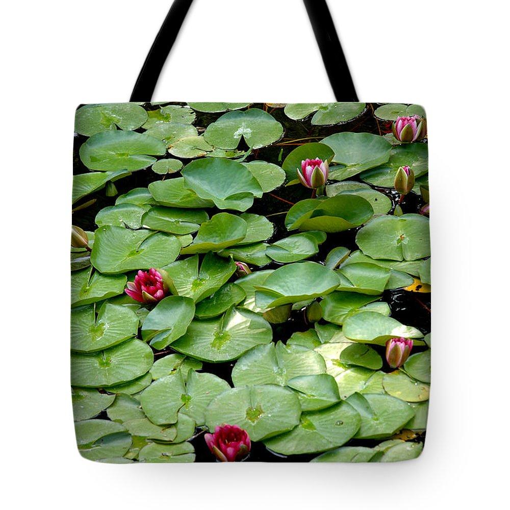 Usa Tote Bag featuring the photograph Hop To It by LeeAnn McLaneGoetz McLaneGoetzStudioLLCcom