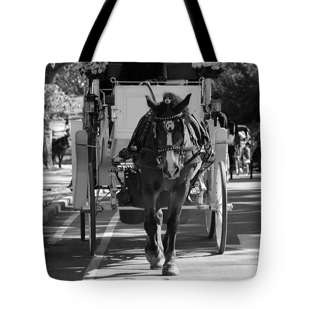 Central Park Tote Bag featuring the photograph Horse And Buggy by Rob Hans