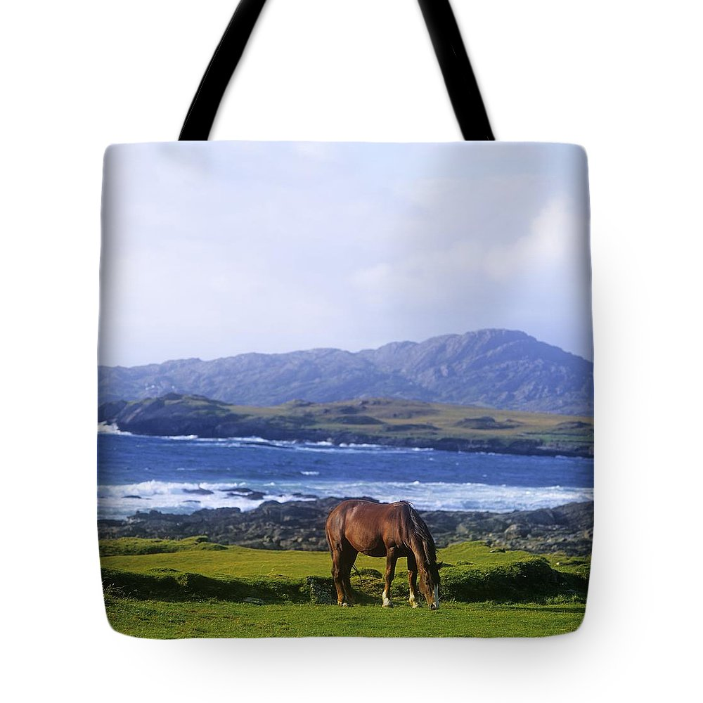 Allihies Tote Bag featuring the photograph Horse Grazing In A Field, Beara by The Irish Image Collection
