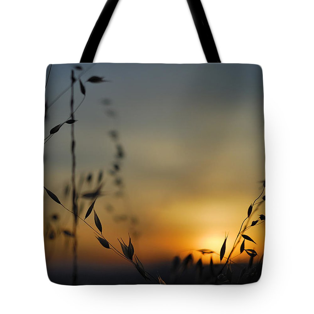 Landscape Tote Bag featuring the photograph Hot Sunset by Guido Montanes Castillo