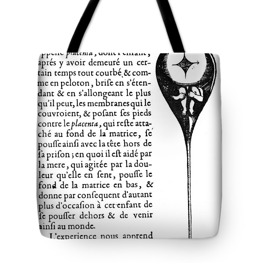Biology Tote Bag featuring the digital art Human Sperm - 17th Century by Granger