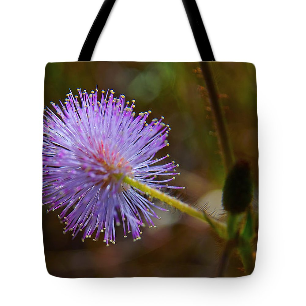 Plant Tote Bag featuring the photograph Humble Weed 2 by Jocelyn Kahawai