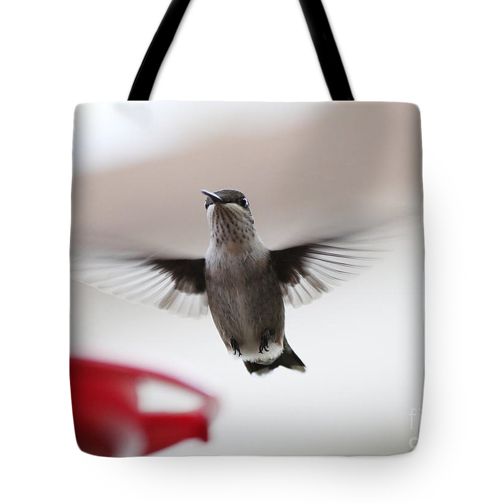 Hummingbirds Tote Bag featuring the photograph Hummingbird Flying by Lori Tordsen
