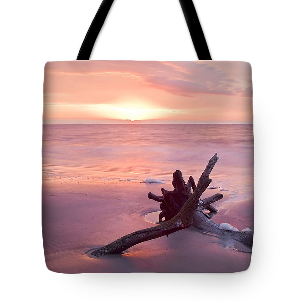Hunting Island State Park Tote Bag featuring the photograph Hunting Island South Carolina by Bill Swindaman