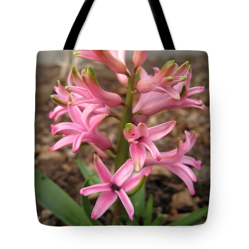 Hyacinth Tote Bag featuring the photograph Hyacinth Named Pink Pearl by J McCombie