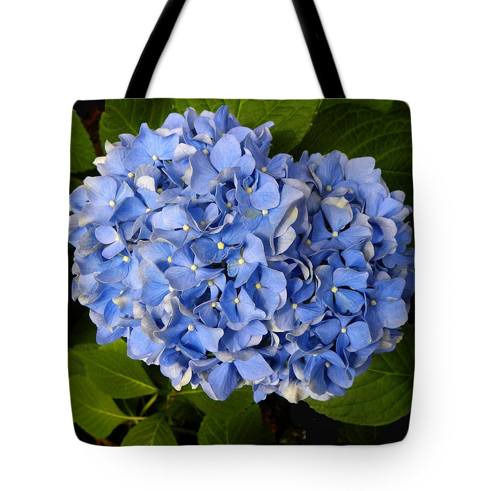 Hydrangea Tote Bag featuring the photograph Blue Hydrangea by Sandi OReilly