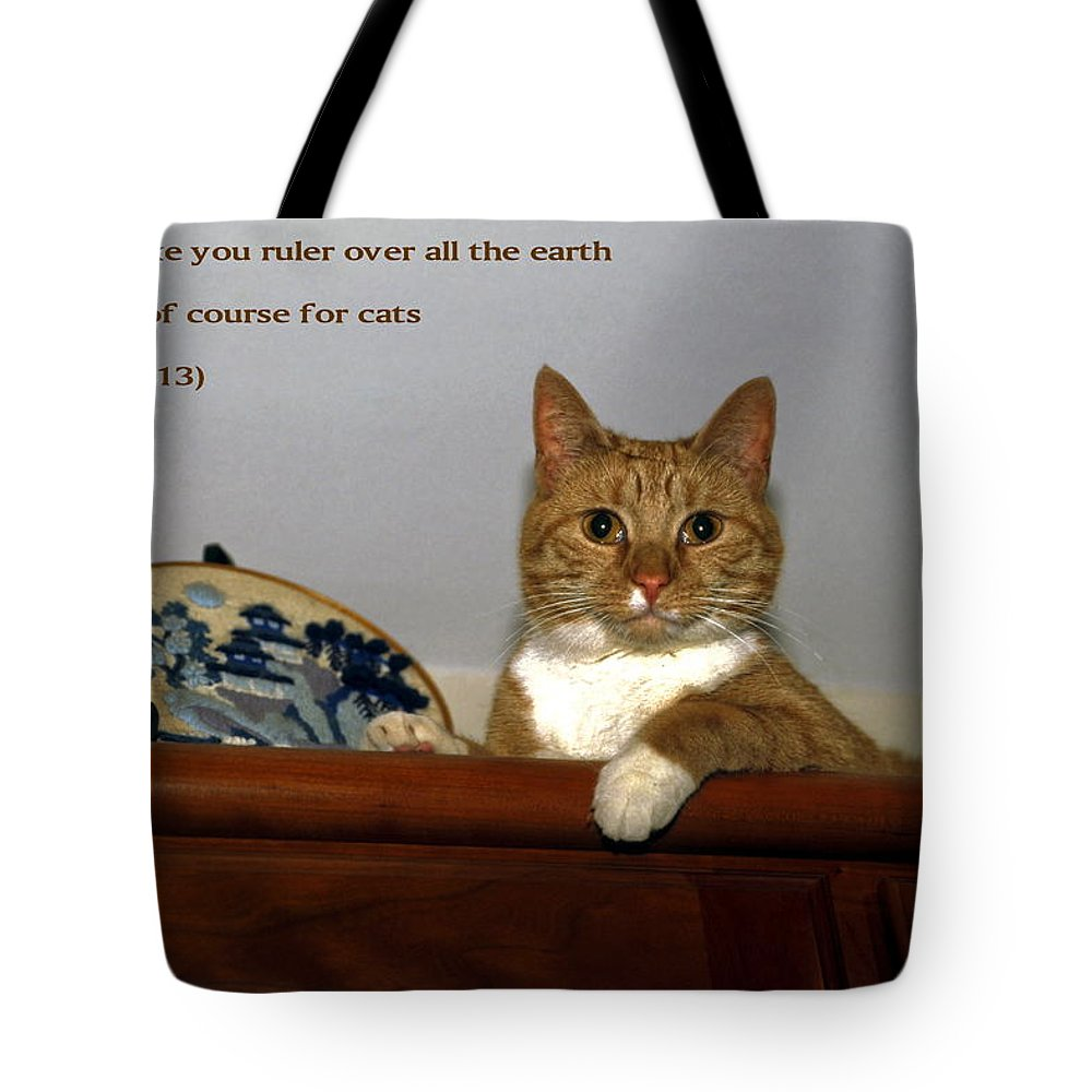 Orange Tabby Cat Lying On Top Of Cabinet Tote Bag featuring the photograph I Shall Make You Ruler by Sally Weigand
