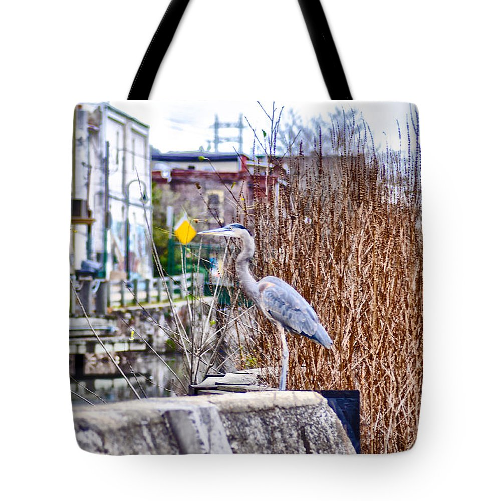 I Should Have Went To Florida Tote Bag featuring the photograph I Should Have Went To Florida by Bill Cannon