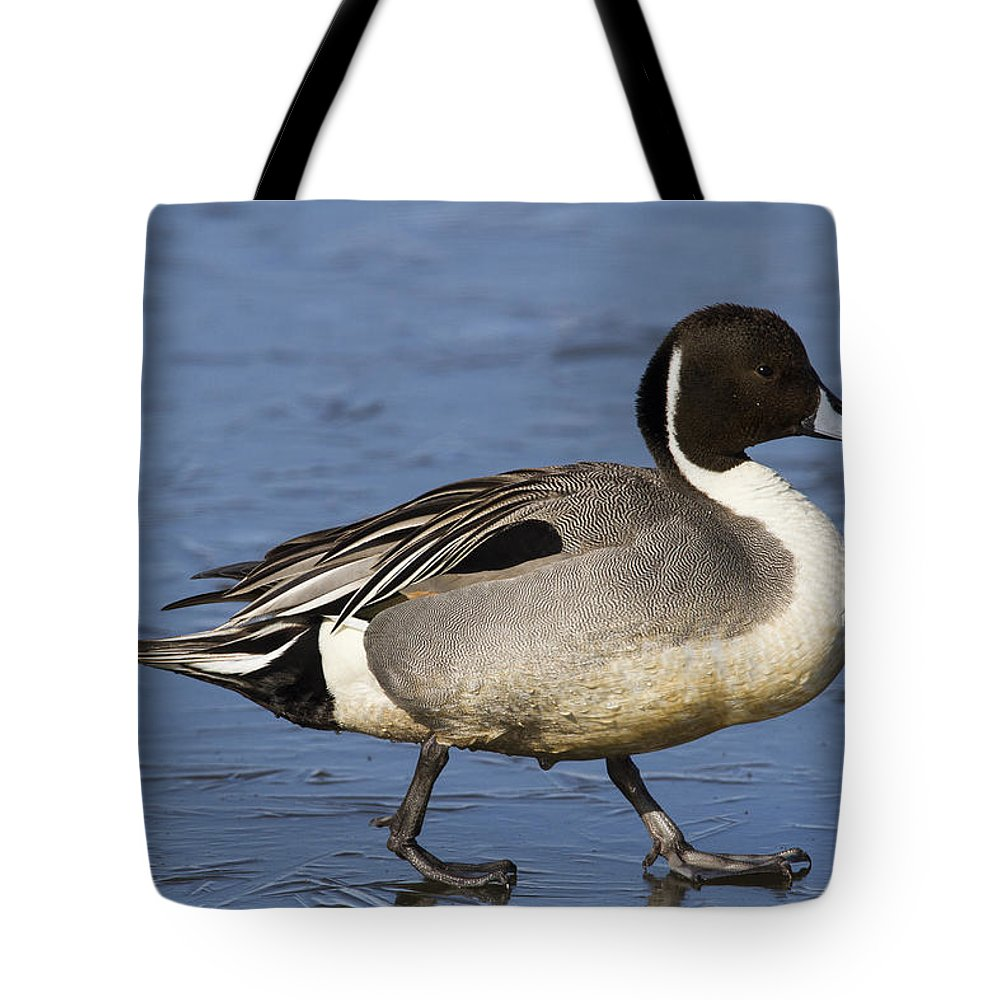 Doug Lloyd Tote Bag featuring the photograph Ice Walker by Doug Lloyd