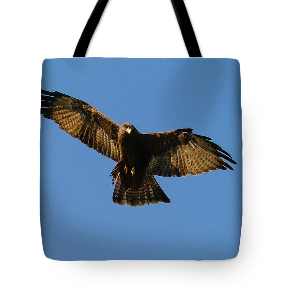 Action Tote Bag featuring the photograph ICU by Alistair Lyne