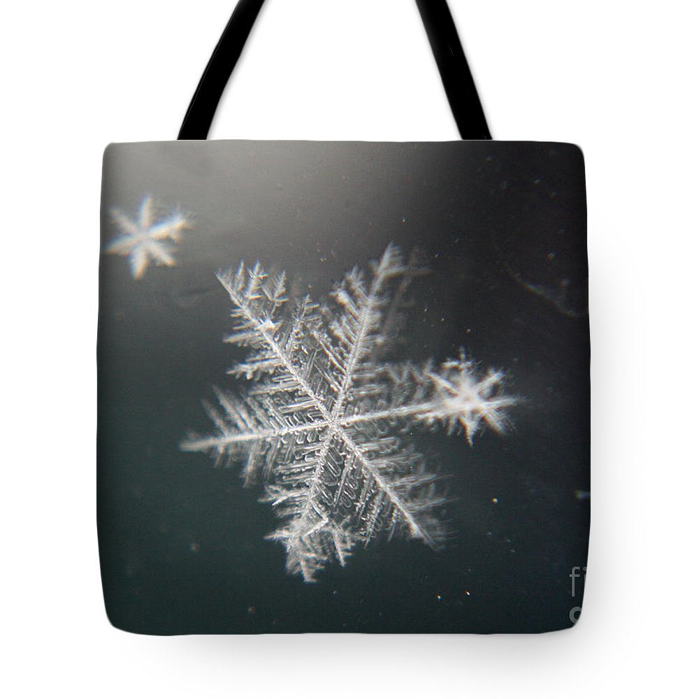 Snowflakes Tote Bag featuring the photograph Icy by Heather Applegate
