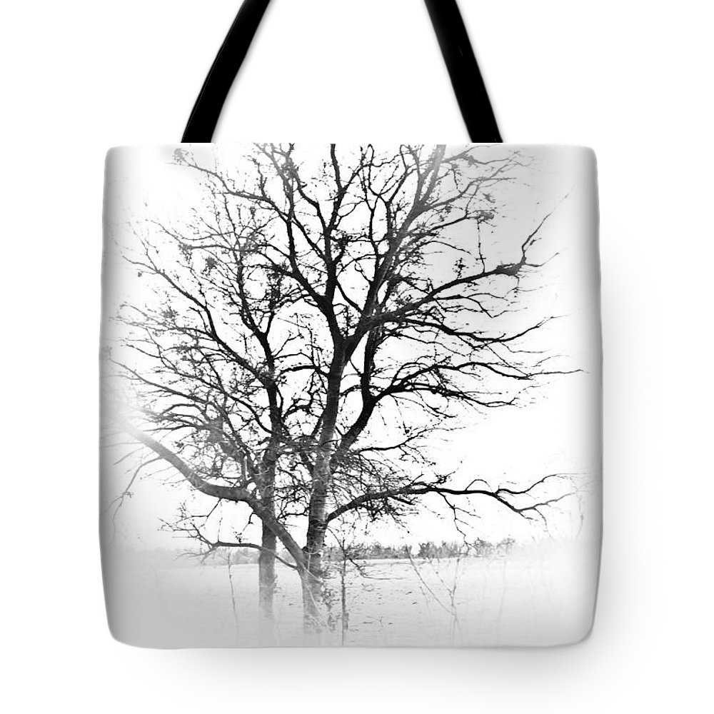 Tree Tote Bag featuring the photograph In Black And White by Kim Henderson