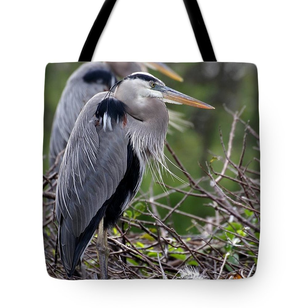 Bird Tote Bag featuring the photograph In The Nest by Sabrina L Ryan