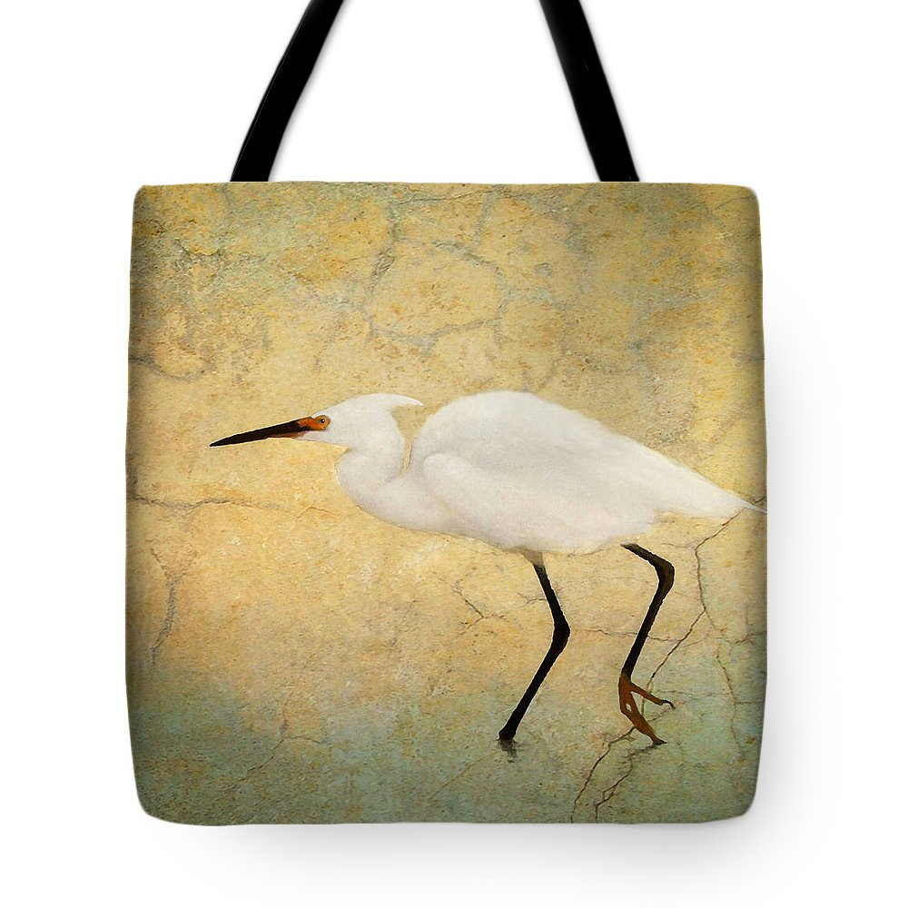 Cloud Tote Bag featuring the photograph Incidental Dance by Karen Lynch