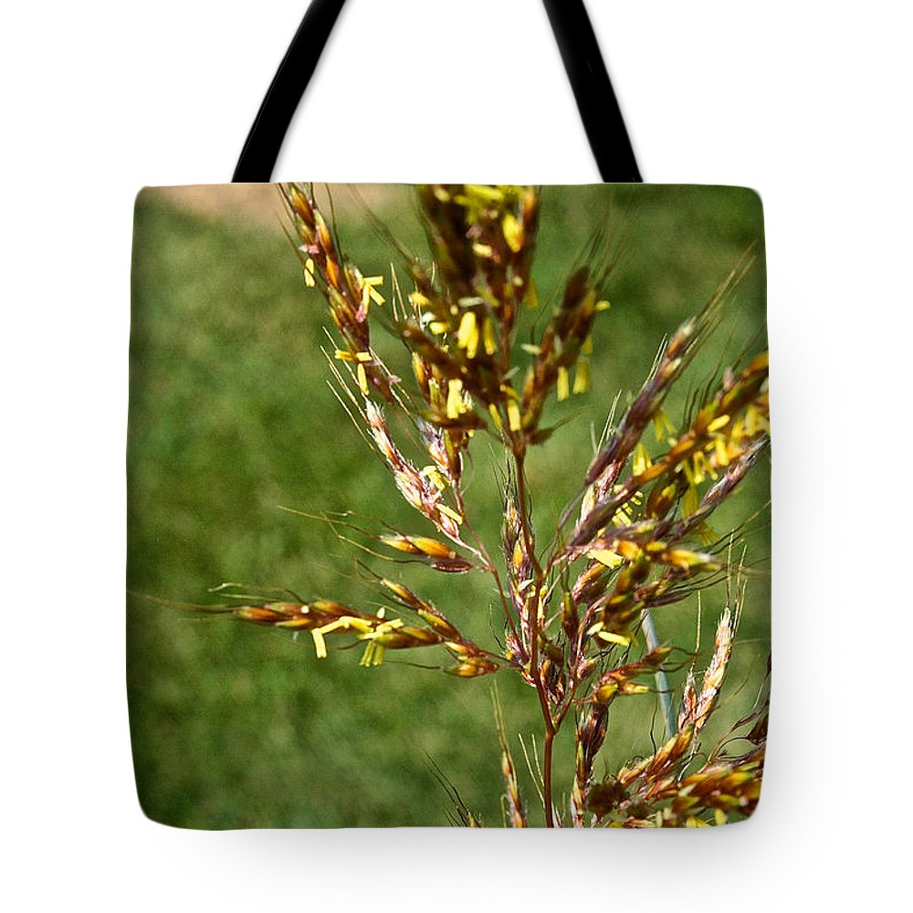 Outdoors Tote Bag featuring the photograph Indian Grass Seed by Susan Herber