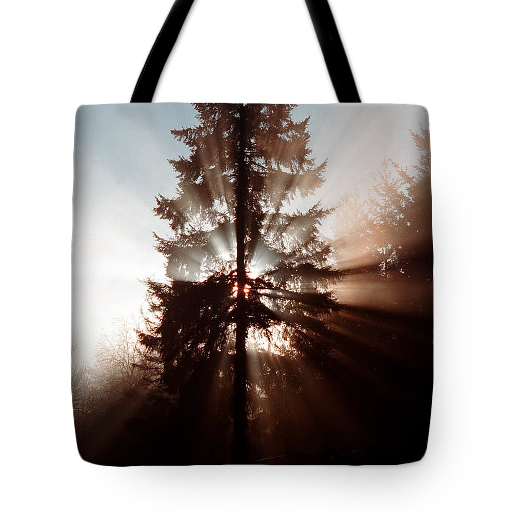 Tree Tote Bag featuring the photograph Inspiration Tree by Mike Nellums