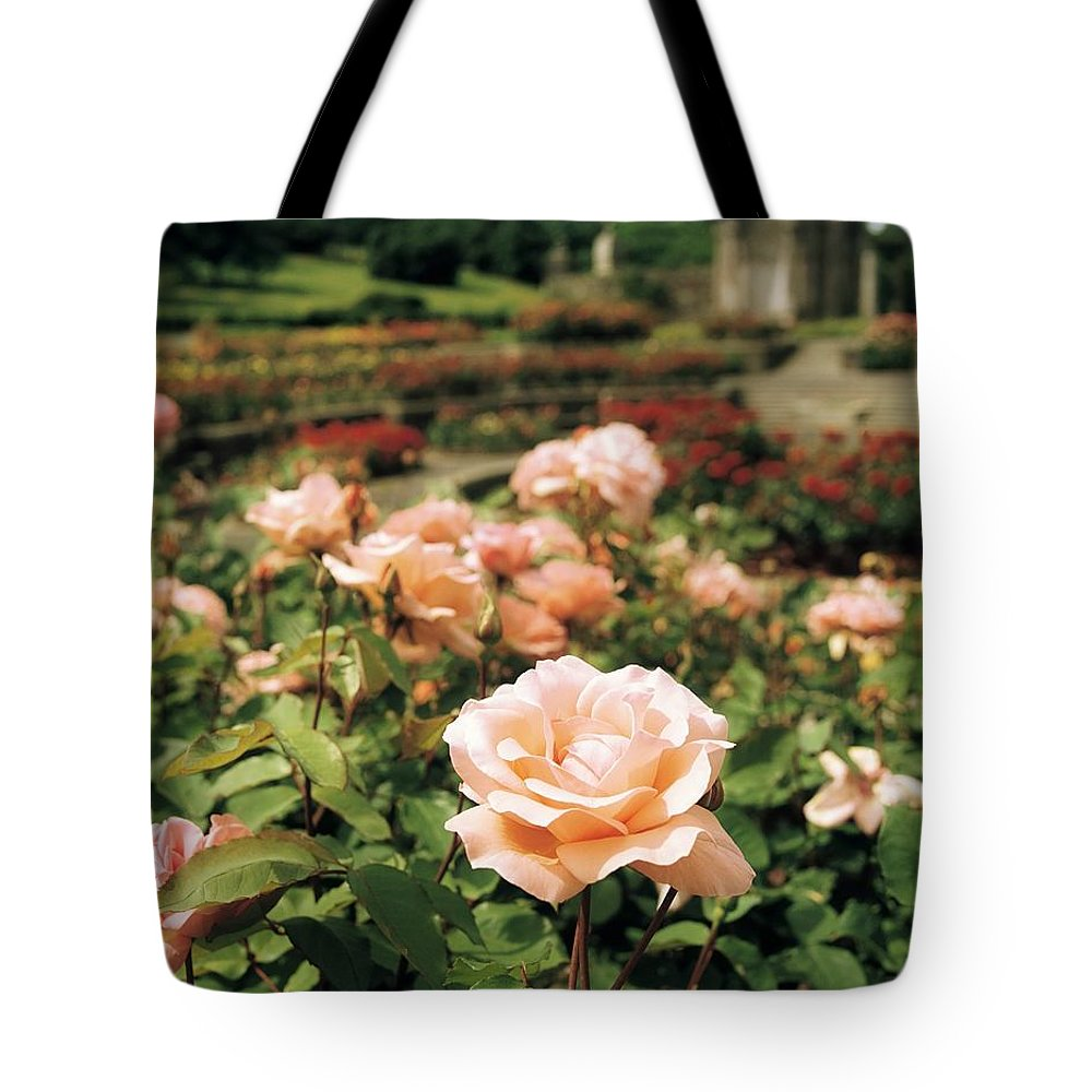 Building Tote Bag featuring the photograph Irish National War Memorial Gardens by The Irish Image Collection