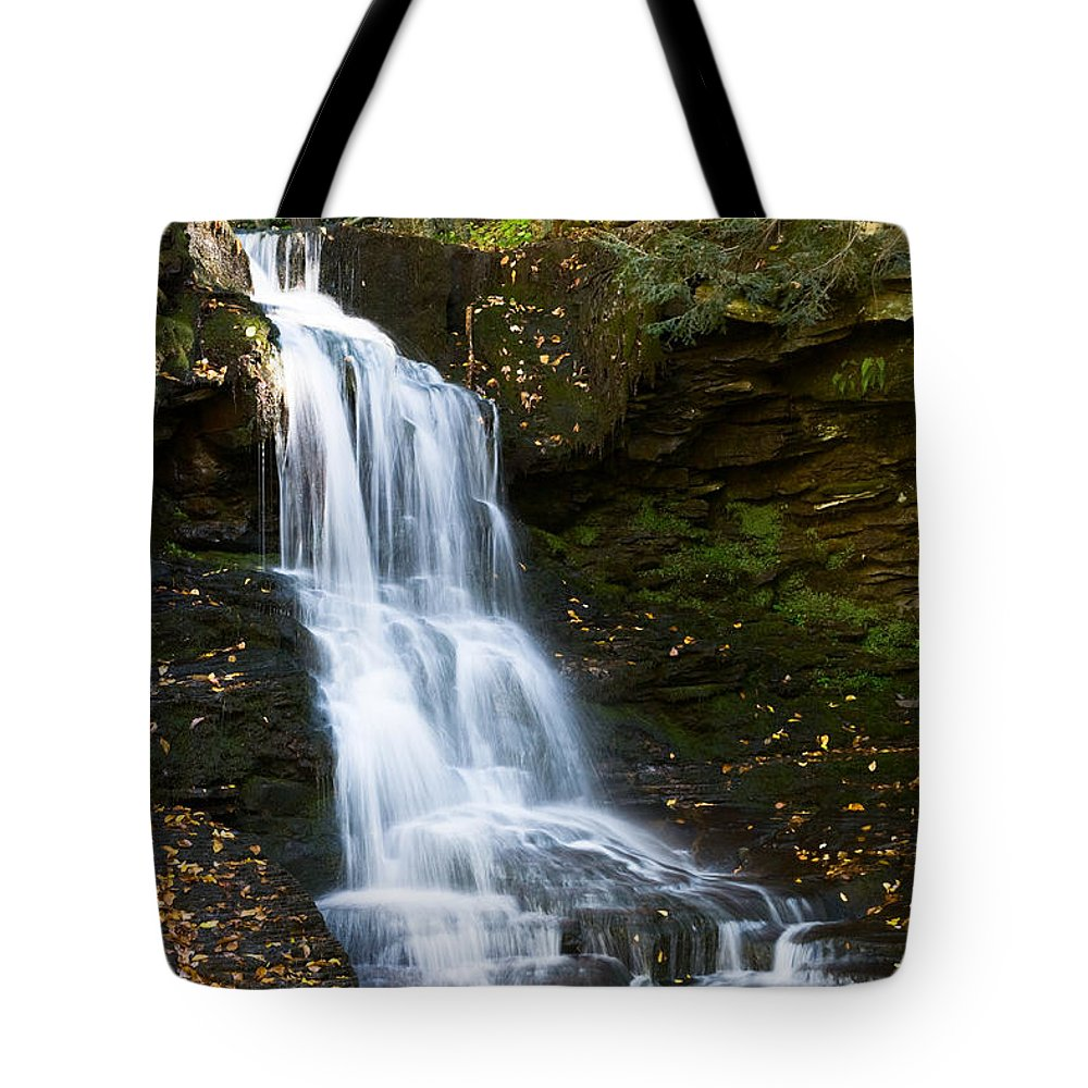 Pennsylvania Tote Bag featuring the photograph Is It Cottonwood by Ronald Lutz