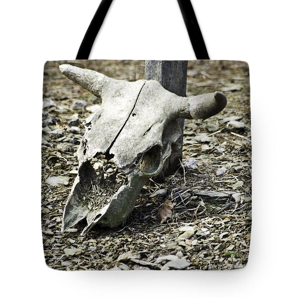 Skeleton Tote Bag featuring the photograph It Was Here by Trish Tritz