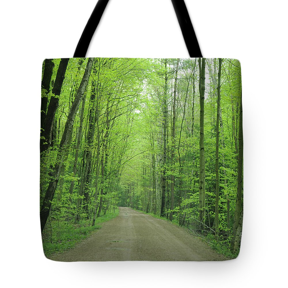Green Tote Bag featuring the photograph Jasper Woods by Ronald Grogan
