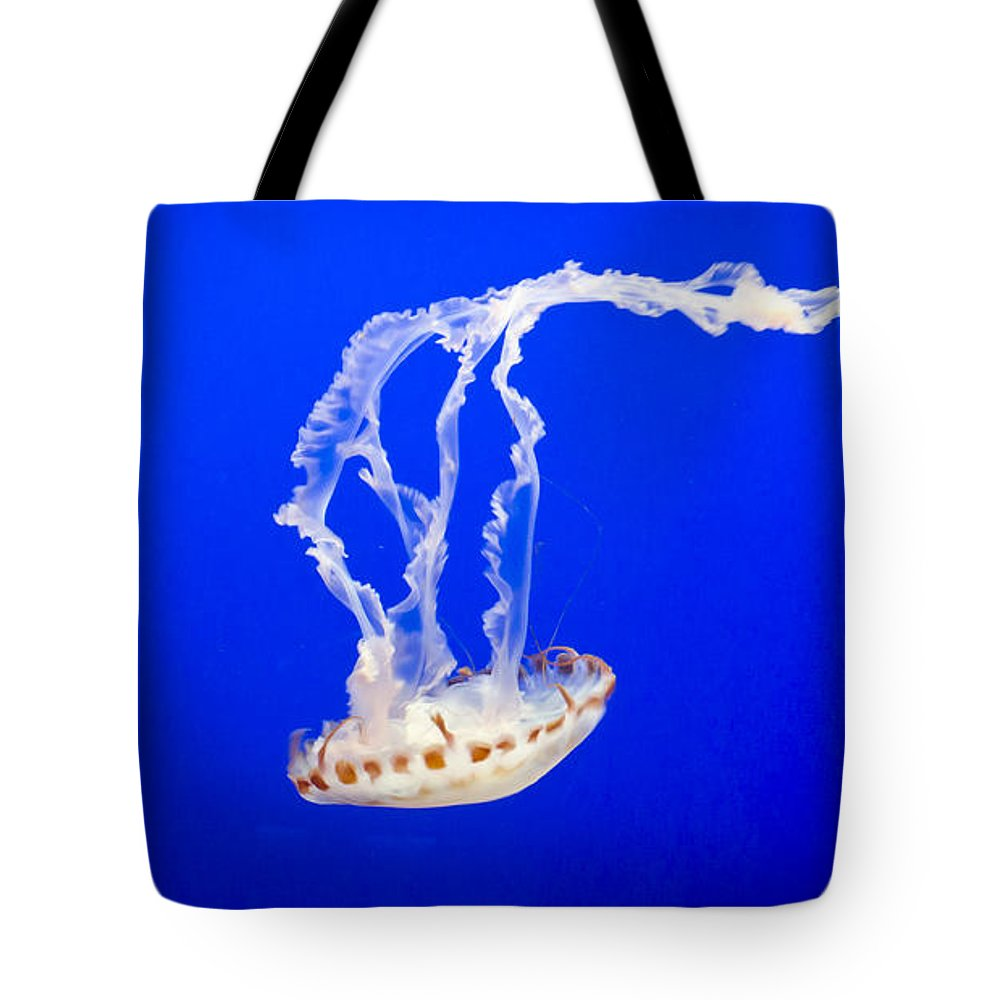 Jelly Tote Bag featuring the photograph Jelly Fish by Heather Applegate