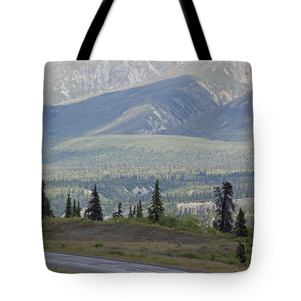 Joggers Tote Bag featuring the photograph Jogger On The Glenn Highway And Chugach by Rich Reid