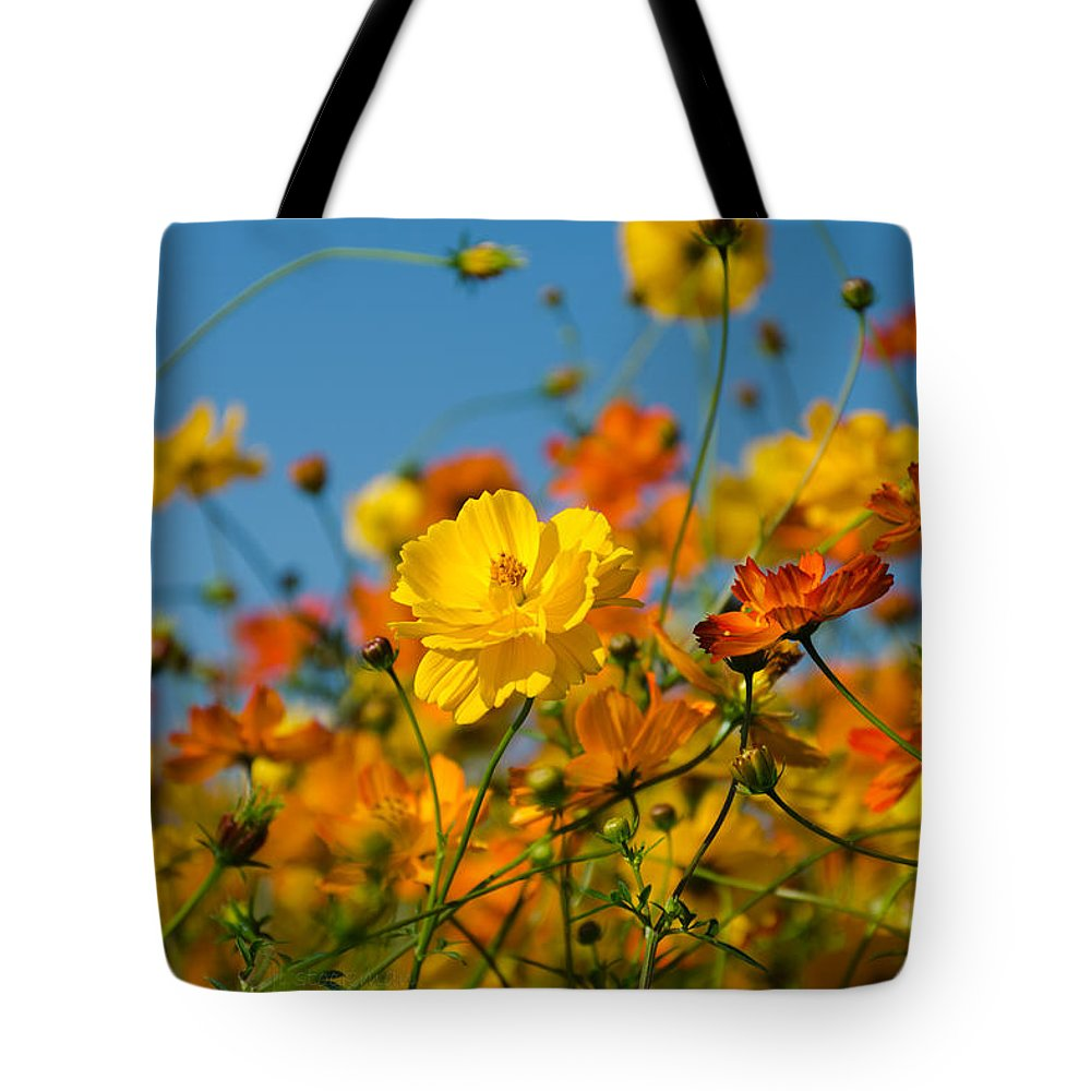 Swansboro Tote Bag featuring the photograph Joyful by Jennifer Stockman
