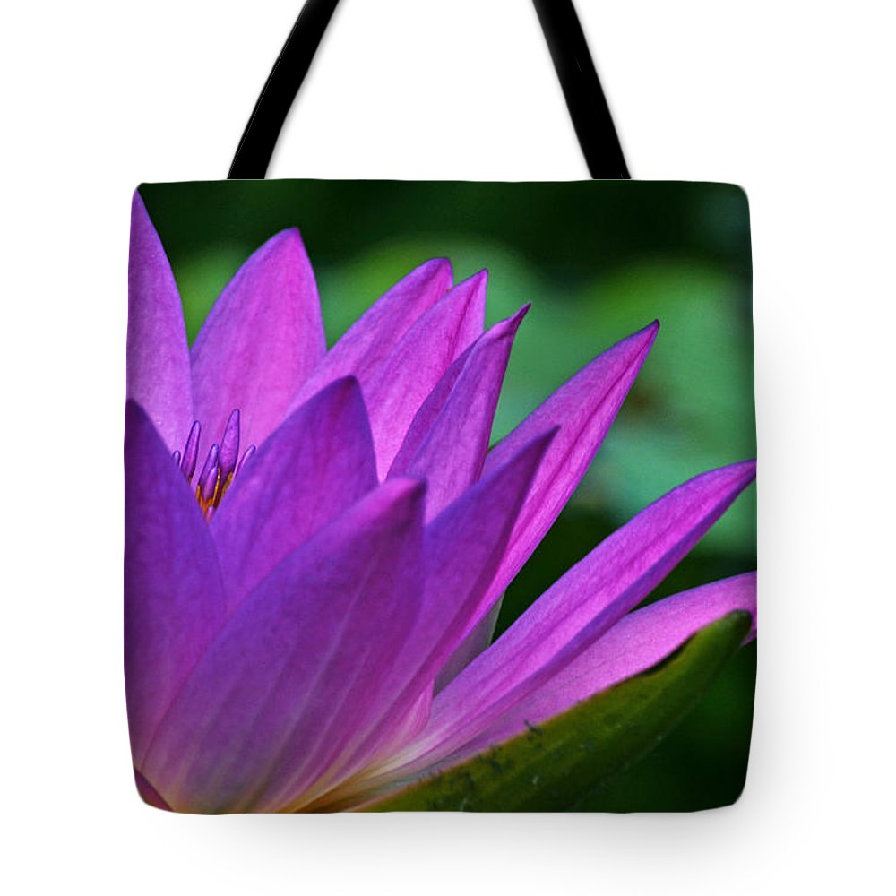 Waterlily Tote Bag featuring the photograph Just A Dream by Melanie Moraga