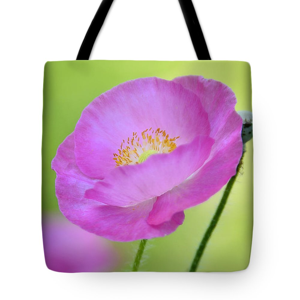 Pink Poppy Tote Bag featuring the photograph Just Call Me Pink by Saija Lehtonen