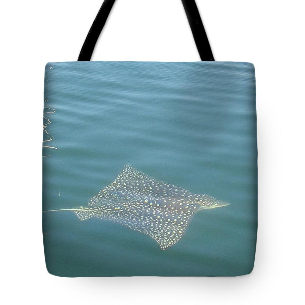 Florida Tote Bag featuring the photograph Key Largo Ray by Lin Grosvenor