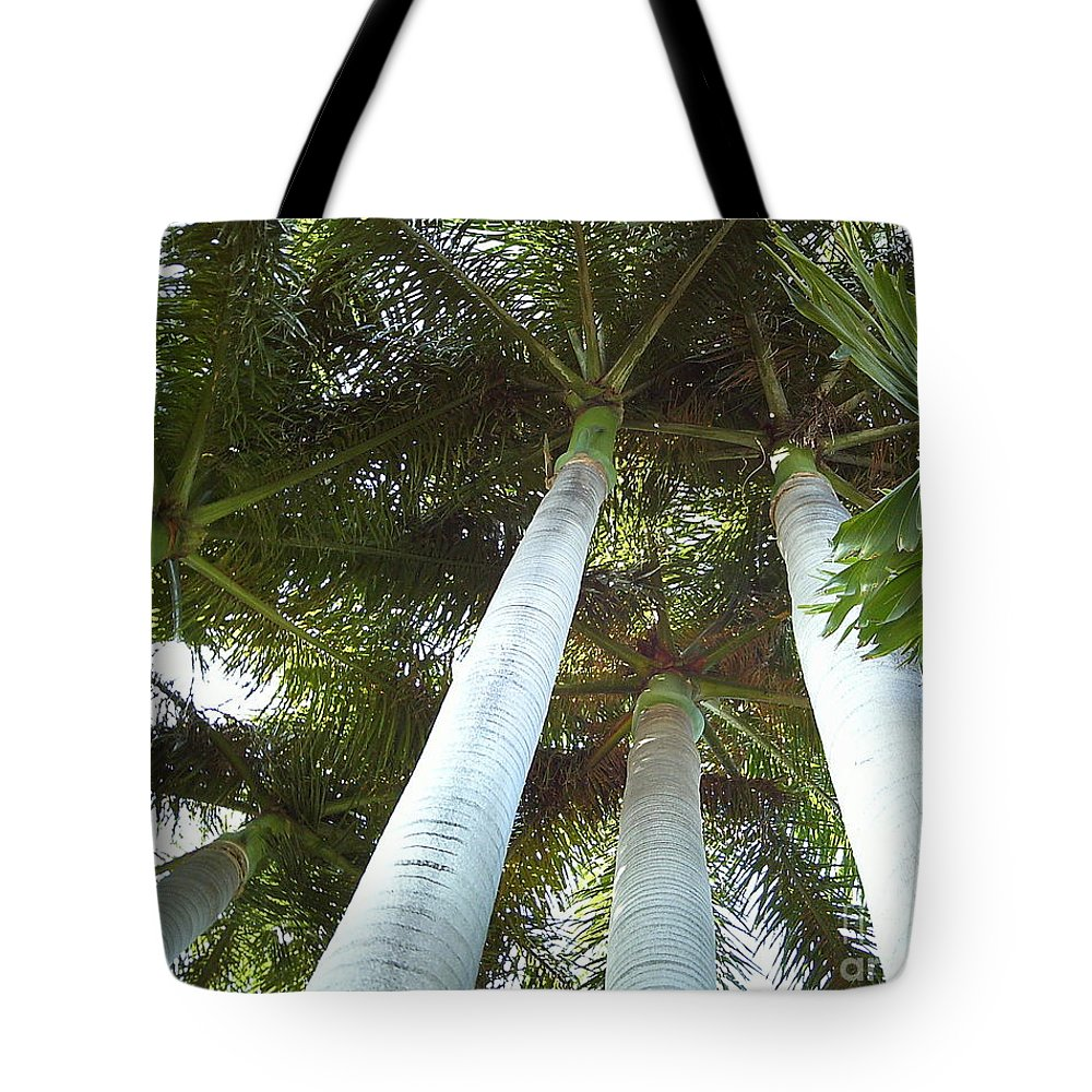 Palm Tote Bag featuring the photograph Key West Palms by Jan Prewett