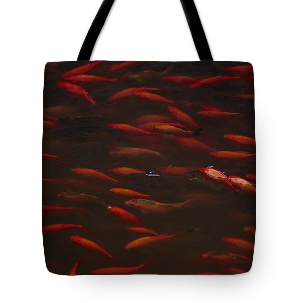 fishes Tote Bag featuring the photograph Koi Fish In China by Michael Nichols