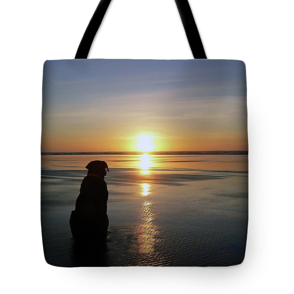 Pet Tote Bag featuring the photograph Labrador Watching The Sun Set by Pamela Patch