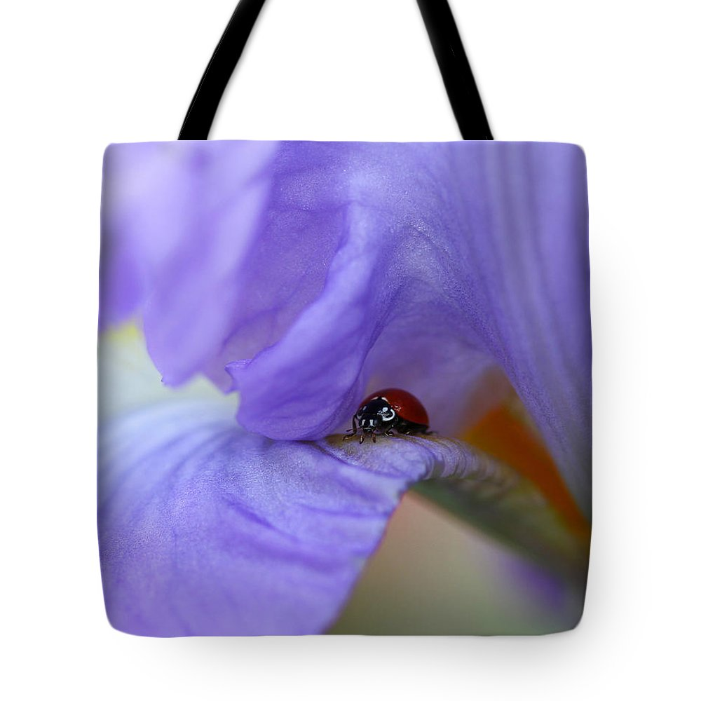 Flower Tote Bag featuring the photograph Ladybug On Iris by Diana Haronis