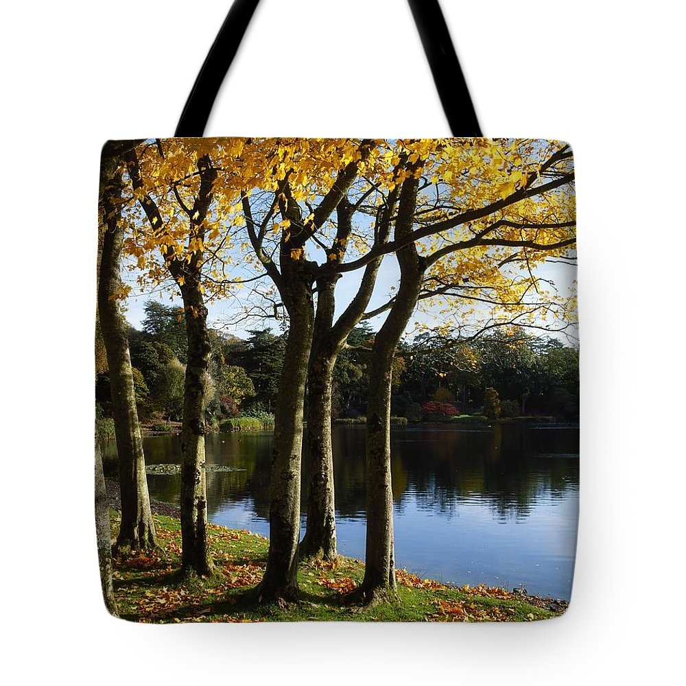 Autumn Color Tote Bag featuring the photograph Lake And Trees, Mount Stewart, Co Down by The Irish Image Collection