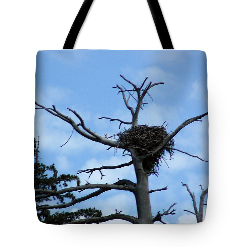 Usa Tote Bag featuring the photograph Lake Tahoe Eagle Nest by LeeAnn McLaneGoetz McLaneGoetzStudioLLCcom