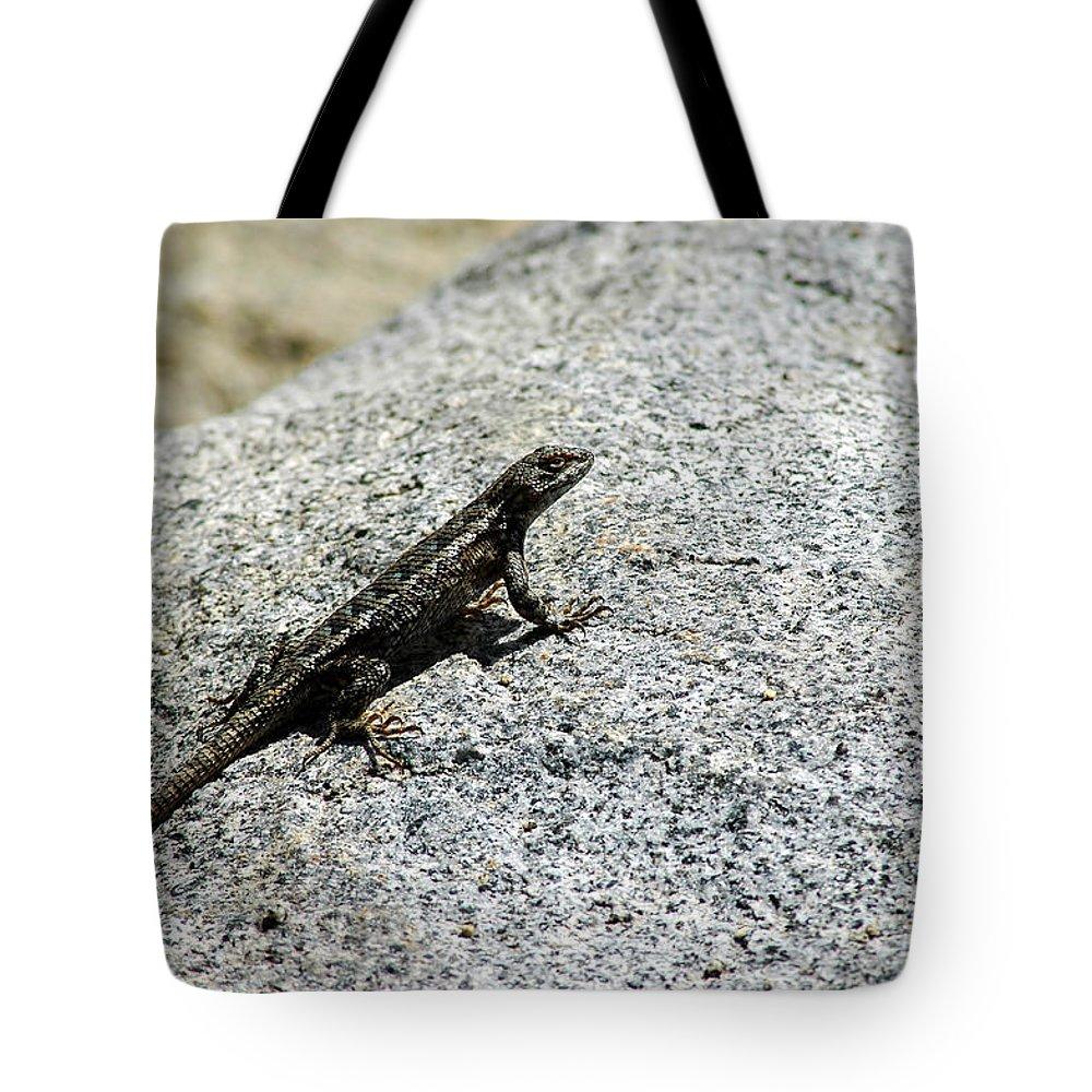 Usa Tote Bag featuring the photograph Lake Tahoe Lizard On A Hot Rock by LeeAnn McLaneGoetz McLaneGoetzStudioLLCcom