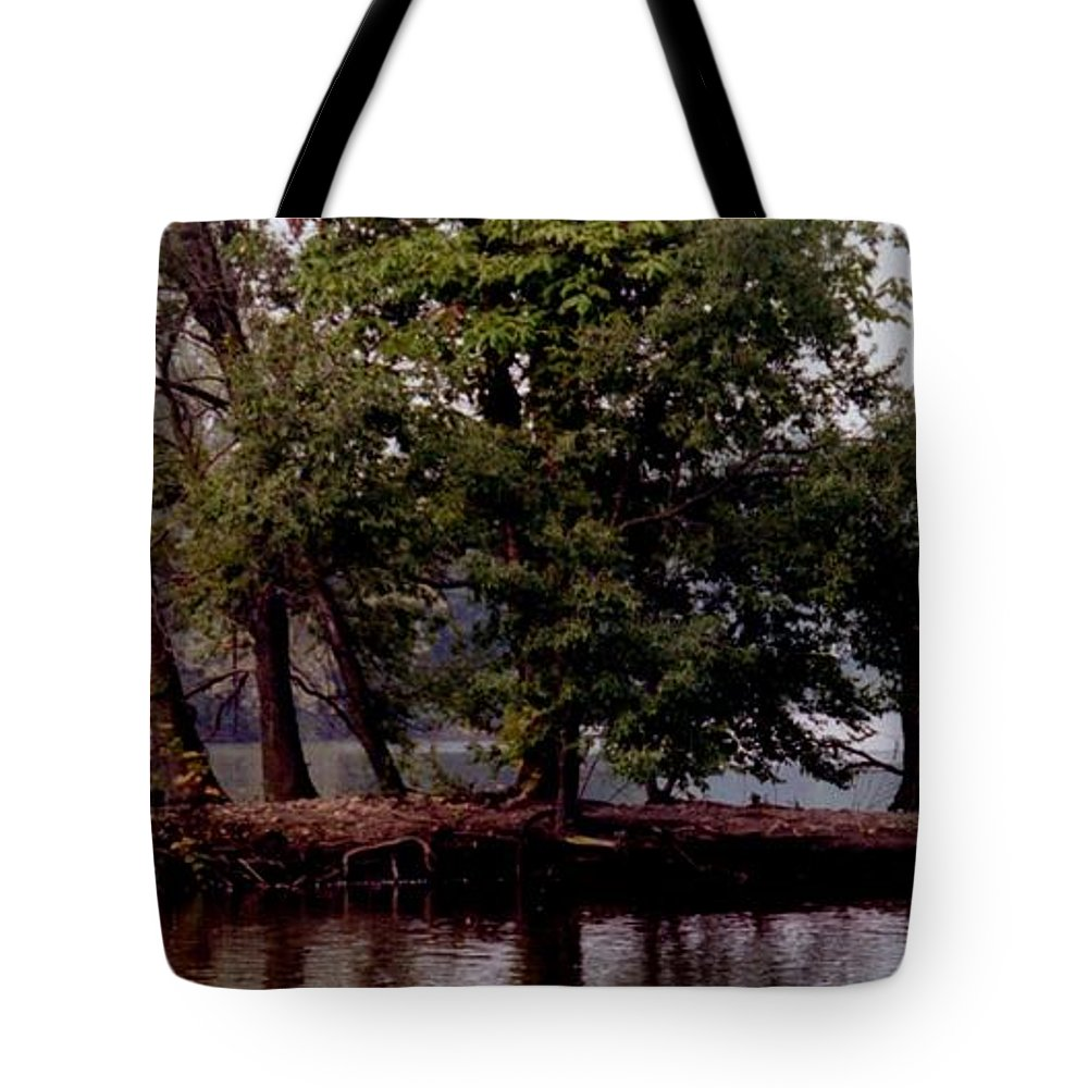 Lakeside Tote Bag featuring the photograph Lakeside by T Campbell