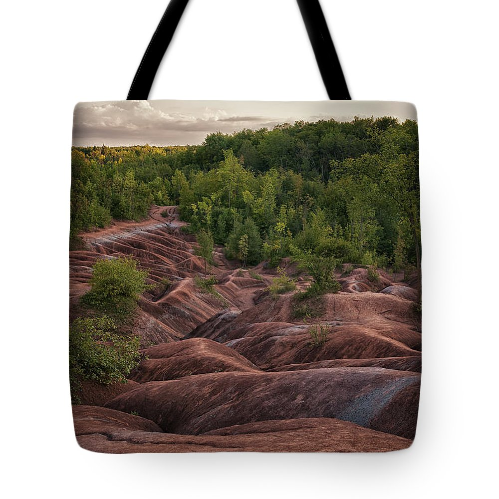 Caledon Ontario Tote Bag featuring the photograph Last Look At The Badlands by Phill Doherty
