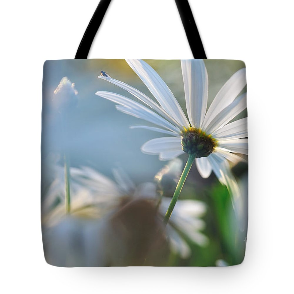Photography Tote Bag featuring the photograph Late Sunshine On Daisies by Kaye Menner