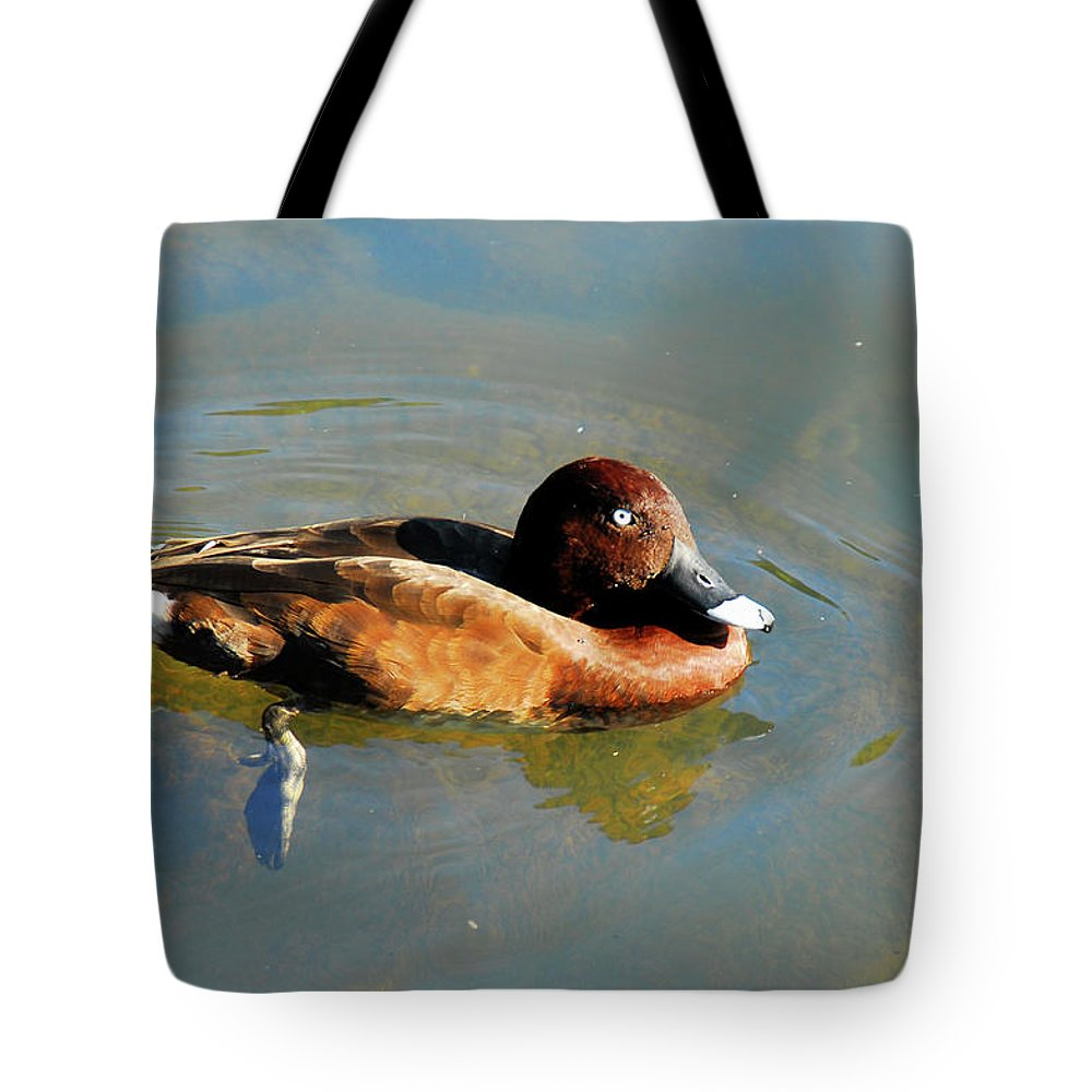 Duck Tote Bag featuring the photograph Lazy Duck Days by Georgiana Romanovna