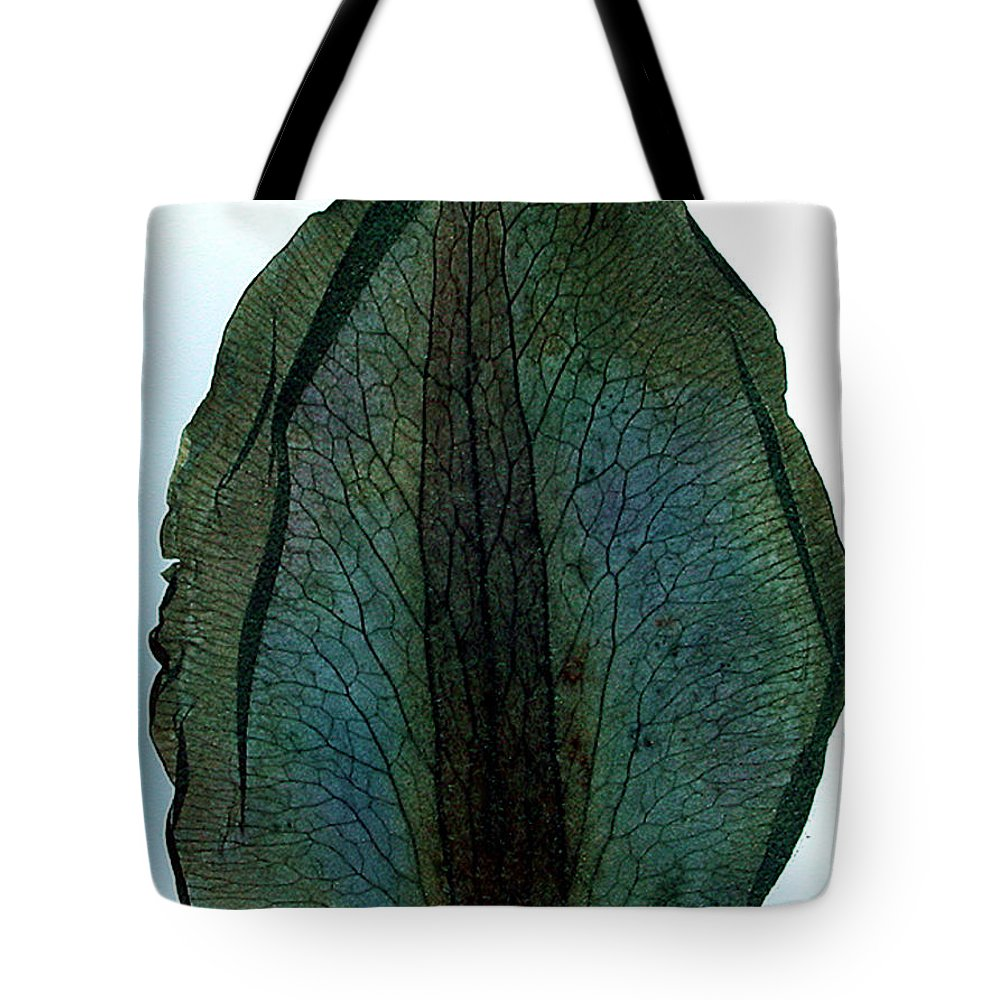 Colette Tote Bag featuring the photograph Leaf Life 2 by Colette V Hera Guggenheim