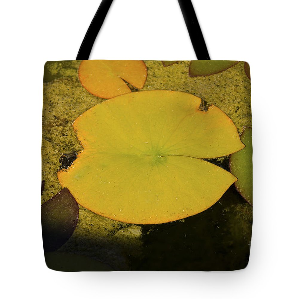Fine Art Tote Bag featuring the photograph Leaf On A Pond by Donna Greene