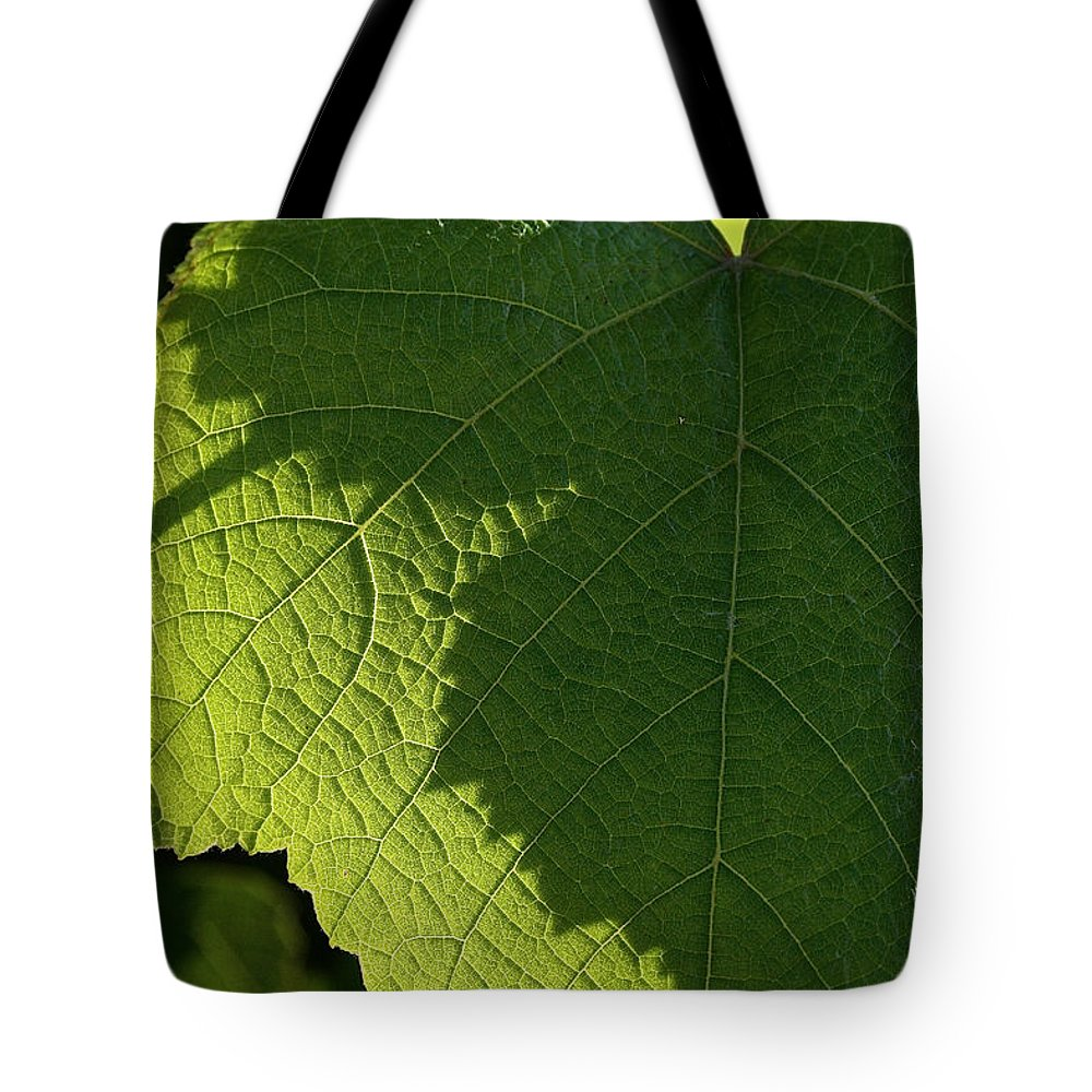 Outdoors Tote Bag featuring the photograph Leaf Shadow by Susan Herber