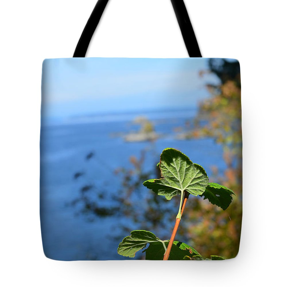 Leaf Tote Bag featuring the photograph Leaf Zone by James E Weaver