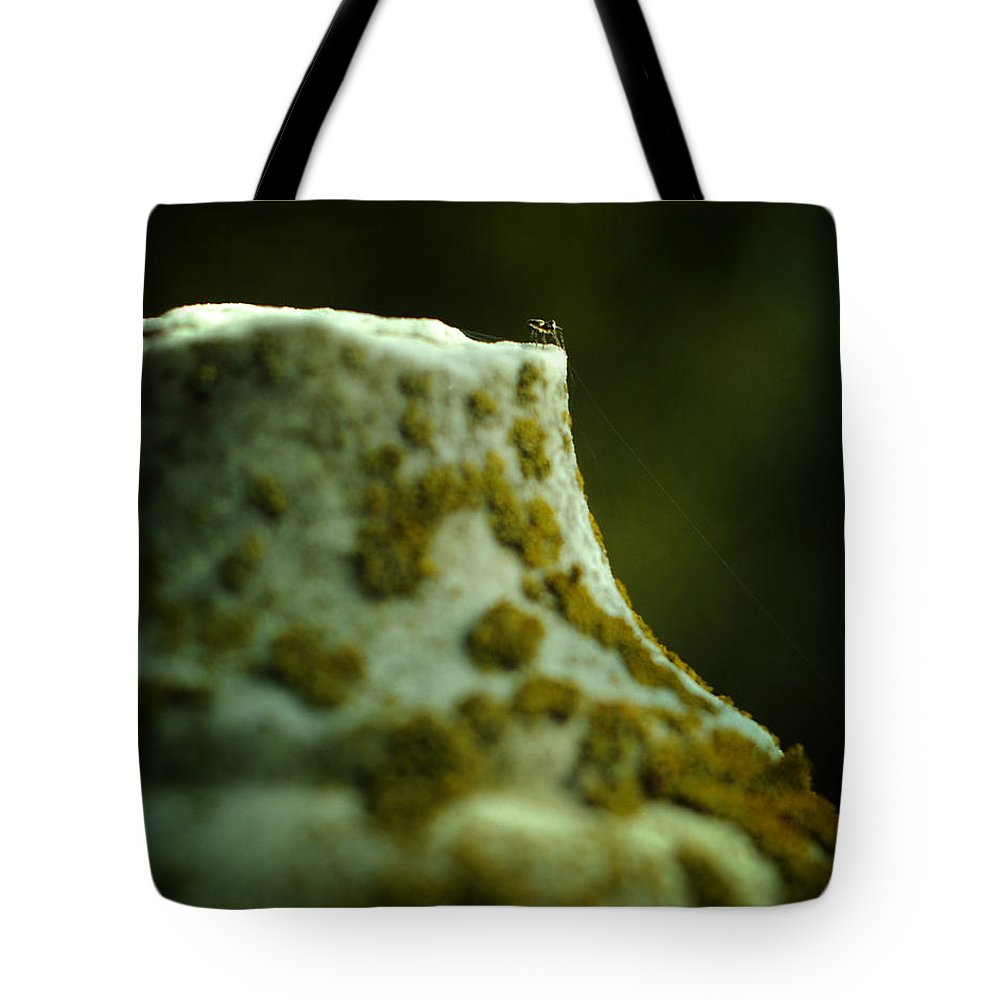Cemetery Tote Bag featuring the photograph Leap Of Faith by Rebecca Sherman
